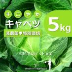 キャベツ 農薬90%カット 特別栽培【5kg】