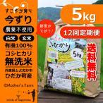 定期購入5kgx12回 令和元年産 玄米 白米 今ずり米 無洗米 農薬不使用 コシヒカリ