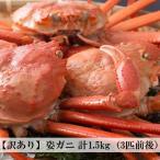 【冷凍】訳あり 香住がに ベニズワイガニ 姿蟹 ボイル 計1.5kg(3匹前後)中松商店