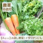 野菜セット 詰め合わせ お試し 農薬不使用 訳あり 不