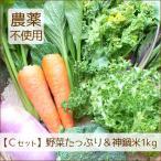 野菜 お米 詰め合わせ 満足セット 農薬不使用 訳あり 不揃い 送料無料
