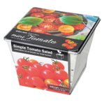デリッシュガーデン ミニトマト栽培セット ブリキ缶で育てる栽培キット 観葉植物 ガーデニング 聖新陶芸 ギフト プレゼント