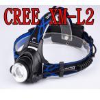 CREE XM-L2 LEDе╪е├е╔ещеде╚ ╦▄┬╬ ╚в╠╡