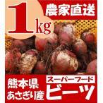 有機栽培 ビーツ 1kg 熊本県あさぎり町産 野菜 栄養 予約販売