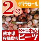 ワケあり 有機栽培 ビーツ 熊本県産 Sサイズ中心 2kg