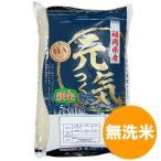 新米 元気つくし 無洗米 5kg  コメ 米 こめ