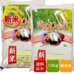 熊本県産 キヌヒカリ  10kg    無洗米 一等米 母の日 ギフト