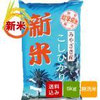 【新米 2020】宮崎コシヒカリ 無洗米 5kg 令和2年産 ご予約品
