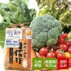 野菜と無農薬コシヒカリ2kgセット 野菜詰め合わせ 九州野菜 お取り寄せ グルメ  母の日 ギフト クール便