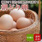 卵 60個入 (割れ保証一割(6個)含む) タマゴ 福岡産 送料無料