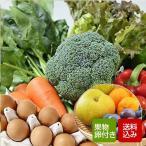 野菜セット たまご10個 旬のくだもの付き 九州野菜10品以上 おまかせ野菜詰め合わせ