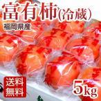 柿 5kg 冷蔵富有柿 冷蔵柿 秀品 ふゆう柿 福岡産 ギフト