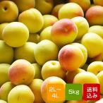 ショッピング梅 南高梅 完熟 5kg  2L〜4L 完熟南高梅 梅干し用  梅酒用  生梅 大分産
