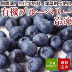 有機ブルーベリー 1kg 冷凍 無農薬 自然農法 産地直送 長崎産 送料無料