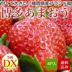 博多あまおう イチゴ 4パック入 いちご 福岡県産