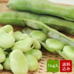 そら豆 2kg そらまめ ソラマメ 蚕豆 春の味覚 空豆 通常便