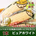 「北海道産 ホワイトコーン」北海道産 とうもろこし  ピュアホワイト 北海道の白いとうもろこし レトルト Lサイズ 1本 価格 440円