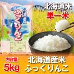 お米 ふっくりんこ 北海道 ふっくりんこ 5kg 送料無料 北海道産米 価格 3350円 令和元年 米 ふっくりんこ 米 北海道米 ふっくりんこ
