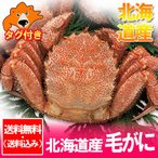 ボイル 毛ガニ ギフト 送料無料 毛ガニ 北海道産 浜茹で 毛がに 約570g×1尾 価格 7800円 毛蟹 取り寄せ