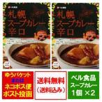 スープカレー レトルト 送料無料 札幌 スープカレー 辛口 1人前 200g ×2個 価格 1080円 スープカレー ルー