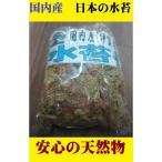 乾燥水苔40g 水こけ 三重伊賀産 天然 洋ラン セッコク 蘭 洋蘭 水コケ みずこけ ポイント消化
