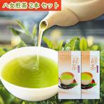 【送料無料】おすすめ八女茶! 八女煎茶 100g|ワンコインでお試しに!
