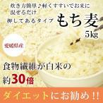もち麦 5kg 国産 (押しもち麦)
