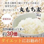 もち麦 5kg 国産 (丸もち麦)