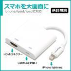 最新版 4K対応モデル   Lightning デジタル AV アダプター スマホ画面を簡単にテレビ接続 HDMI 変換 ケーブル 最新iOS自動対応