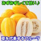 星州チャメ(ゴールドメロン・まくわうり) 1袋1.2kg・約4〜5個入り 【冷蔵】