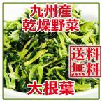 乾燥野菜 大根の葉 100gX2個   国産 九州産 (ゆうパケット限定)