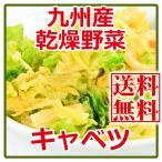 乾燥野菜 キャベツ 125gX2個  国産 九州産 (ゆうパケット便限定)