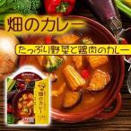野菜スムージーで煮込んだ畑のカレーたっぷり野菜と鶏肉のカレー