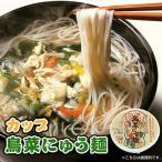 フリーズドライ 鳥菜にゅう麺 カップ 66g(にゅうめん) 坂利製麺所