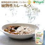 ノンアレルギー 植物性カレールウ  Vegete(ベジテ) 140g 甘口 グルテンフリー 無添加