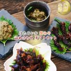 海鮮 缶詰 ほたるいか 蟹みそ 計6食 詰め合わせ ギフトセット 兵庫県 ハマダセイ ご飯のお供 プレゼント