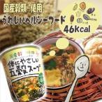 カップ 体にやさしい五穀スープ  あっさり和風塩味  ヒガシフーズ 健康雑穀ダイエットスープ