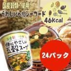 ショッピングダイエット カップ 体にやさしい五穀スープ  あっさり和風塩味  健康雑穀ダイエットスープX24個