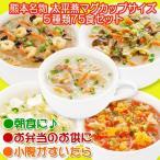 春雨スープ 熊本 ご当地グルメ 太平燕(たいぴーえん)5種類75食セット くまモン