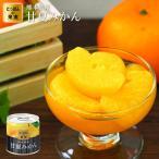 缶詰 にっぽんの果実 熊本県産 甘夏みかん 185g(2号缶) フルーツ 国産 国分 K&K