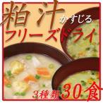 粕汁 フリーズドライ味噌汁 3種類30食 ギフトセット 酒粕使用 インスタント味噌汁