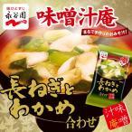 永谷園 フリーズドライ 味噌汁 長ねぎとわかめ 8g 合わせ 即席味噌汁 インスタントみそ汁