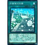 遊戯王 20PP-JP011 白薔薇の回廊【N(ノーマル)】