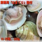 殻付きボイルはまぐり500g(16〜20粒) はまぐり ハマグリ 蛤