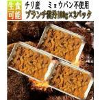 ブランチ雲丹100g×2パック(冷凍) うに ウニ 雲丹 ブランチ ぶらんち