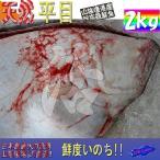 比目鱼 - 天然物 平目2.0kg前後 ひらめ ヒラメ 平目 鮃