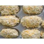 広島県産 牡蠣フライ1パック500g入り かき カキ 牡蠣 岩牡蠣