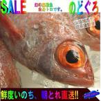 幻の超高級魚、のどぐろ1kg(アカムツ)山陰境港産