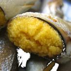 超特大ししゃも60尾入り シシャモ 柳葉魚