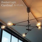 照明器具 リビング ペンダントライト デザイナーズ 北欧 天井 吊り下げ cardinal カーディナルDICLASSE